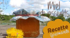 Recette : Miel de pissenlit - gelée de pissenlit au Xylitol_ Carolyne Mathieu